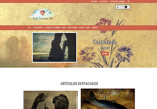 Soluciones ecommerce-ejemplo-tienda-anyelclearwaterart